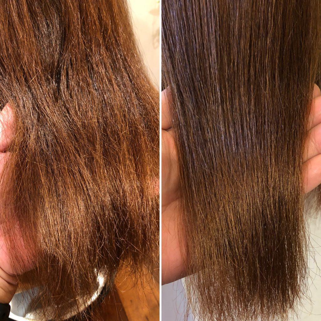 美髪再生プレミアム トライアル